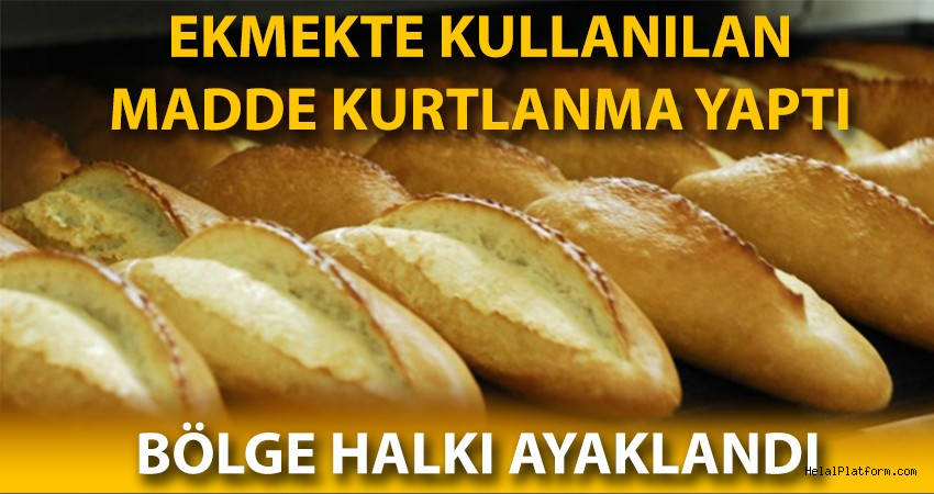 Ekmekte kullanılan madde ekmekte kurtlanma yaptı!