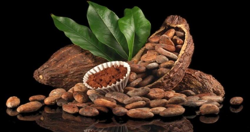 Kakao likörü nedir? Haram mıdır?