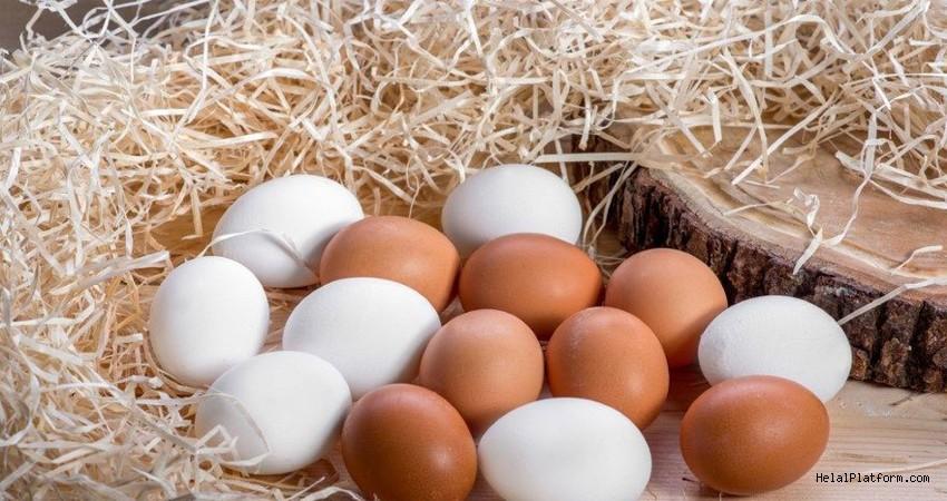 Beyaz ve kahverengi renkli yumurtalar arasındaki farklar nelerdir? Renkleri neden farklıdır?