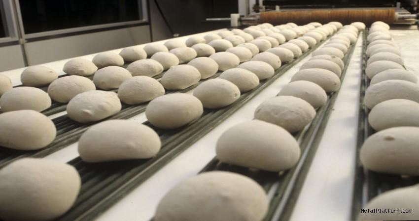 Ekmek Geliştirici Nedir?