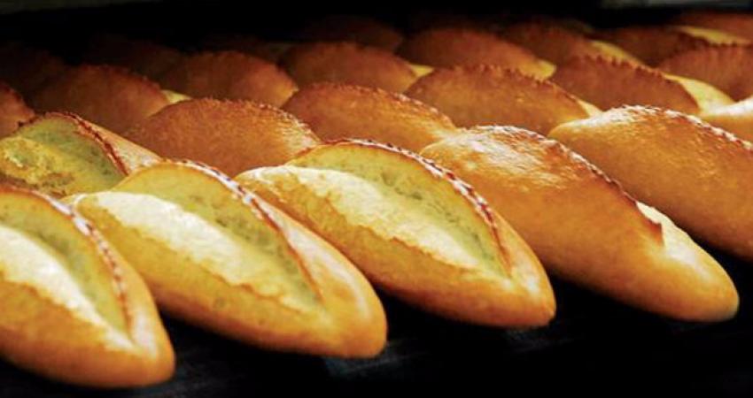 Ekmekten bakın ne çıktı! İşte analiz sonucu