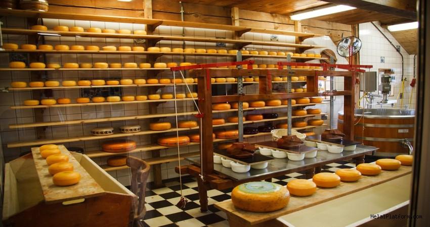 Fare Kadar Aklı Olan Her Gün Peynir Yer
